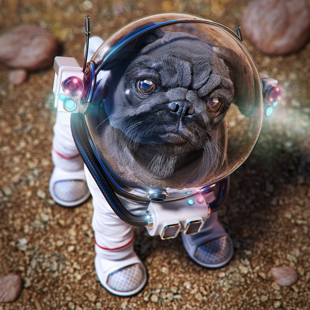 3d-modo-photoshop-dog-on-mars-alexandre-raad